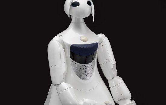 Robina partner robot by Toyota