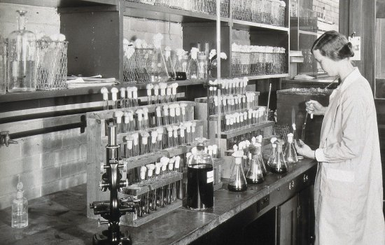 A woman scientist doing experiments in a chemical laboratory