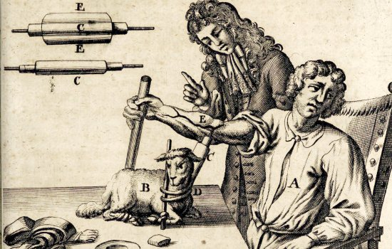 Scientist performing a blood transfusion between a lamb and a man