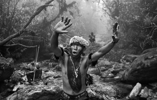 A shaman raises his hands above his head. He stands in a steam in a dense jungle and two other men crouch in the background.