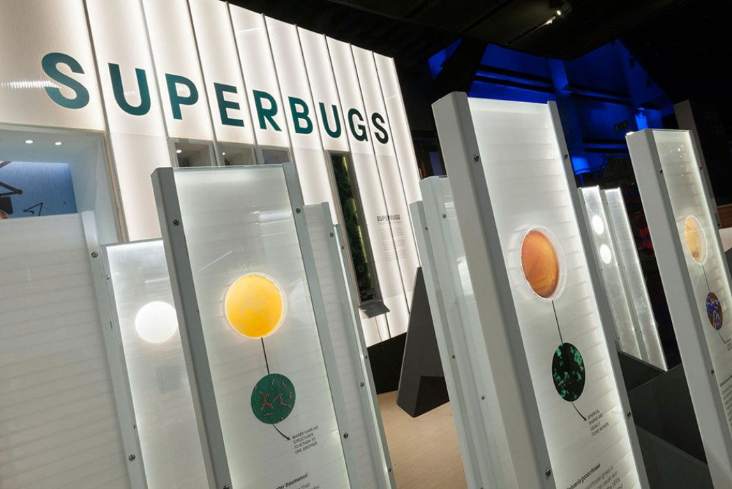Bacteria on display in the Superbugs exhibition