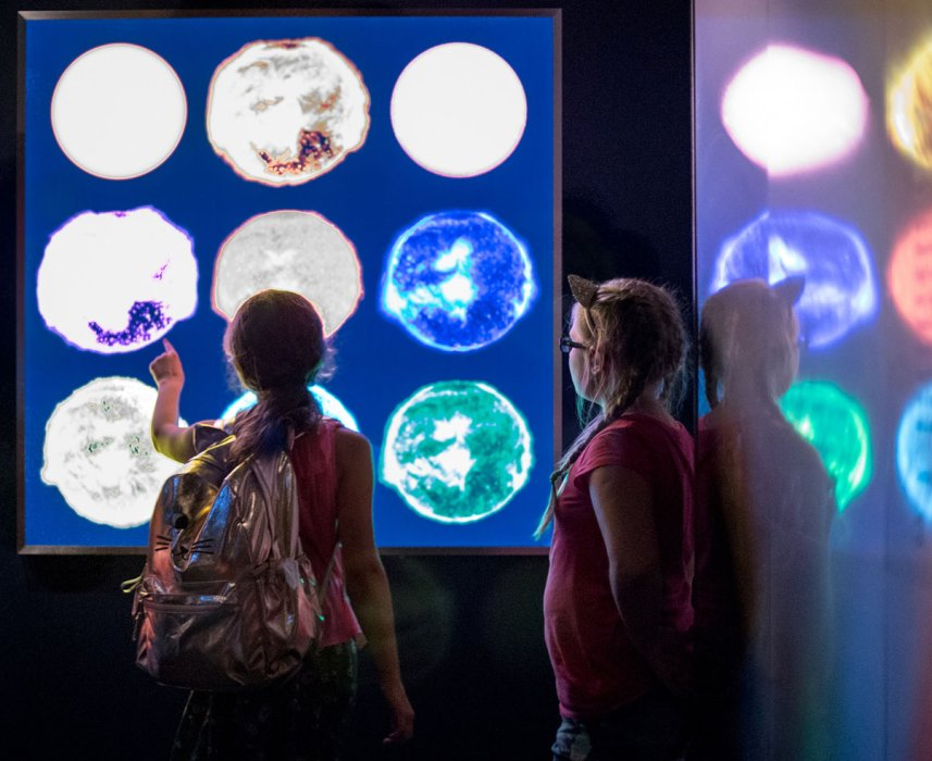 Two children looking at images of the Sun at different wavelengths in the Sun exhibition at the Science Museum