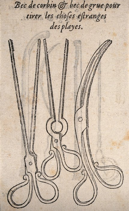 Three 16th century forceps used for surgery