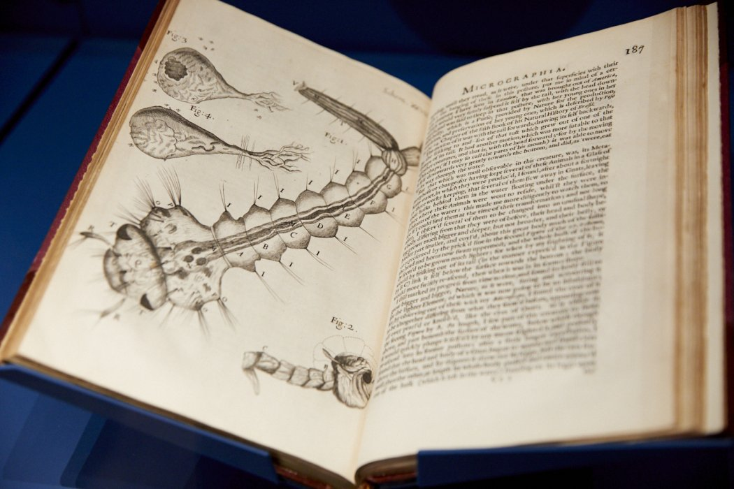 an open book showing a drawing of a microcsope image and text