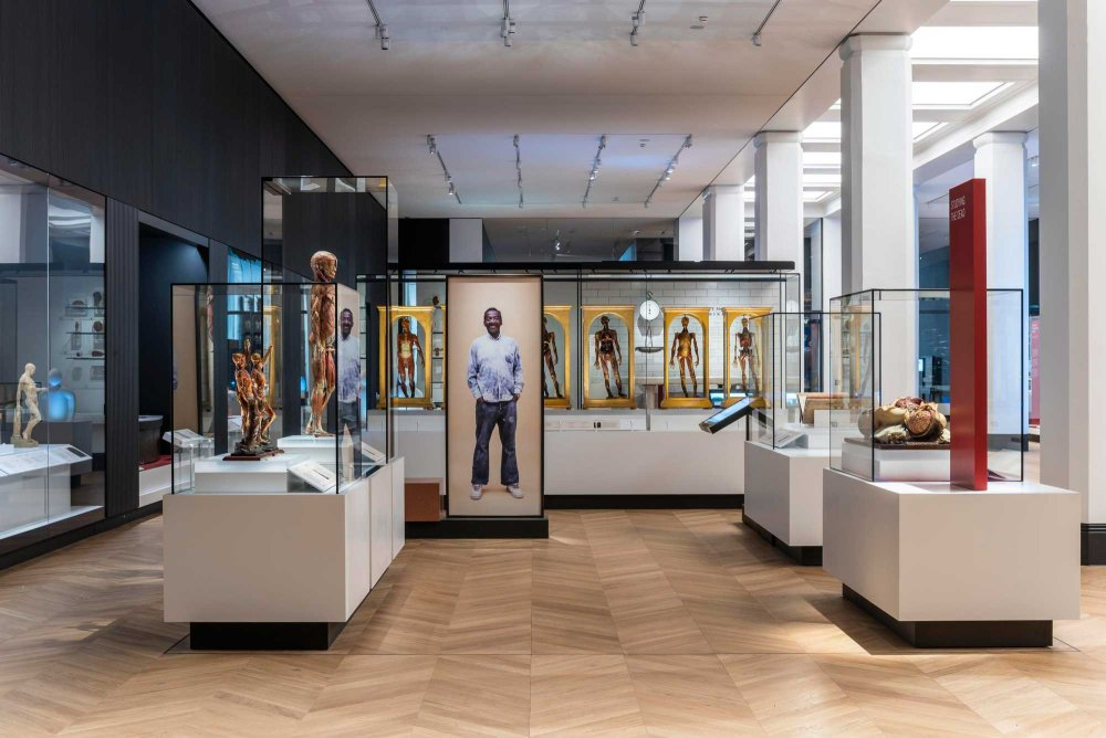 Medicine and Bodies gallery